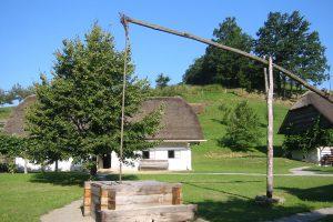 Vodnjak – Štepih na čapljo