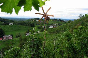 Vinsko turistična cesta