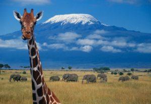 Potopisno predavanje  dr. Jožeta Lipnika - Kilimandžaro @ Kulturni dom Rogatec